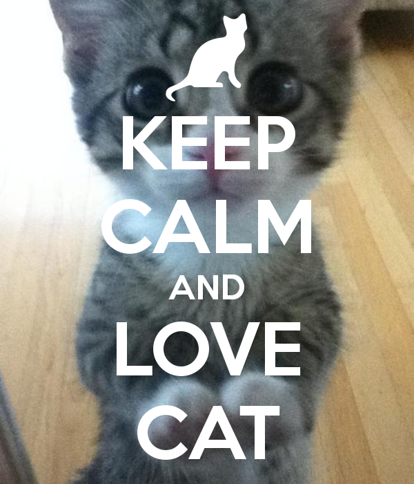 keep-calm-and-love-cat-393.png